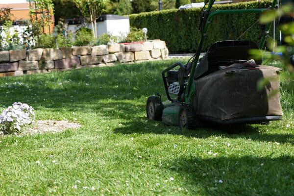 Gartenbau Job
