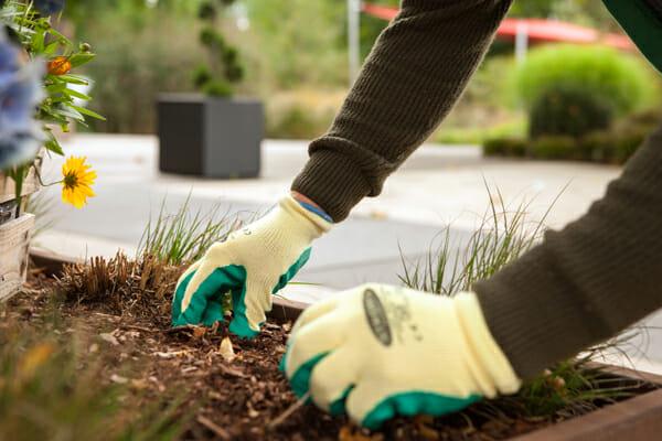 Wörner Gartenarbeit