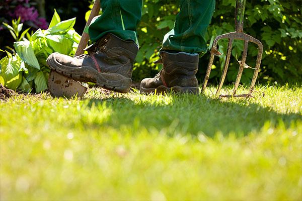 Ausbildung Gärtner