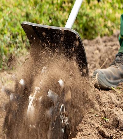 Welche Voraussetzungen muss ich für Jobs im Garten- und Landschaftsbau haben?