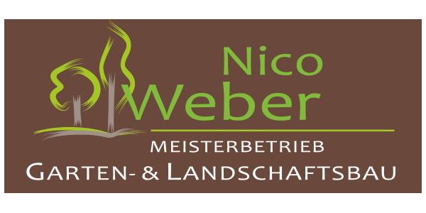 Nico Weber